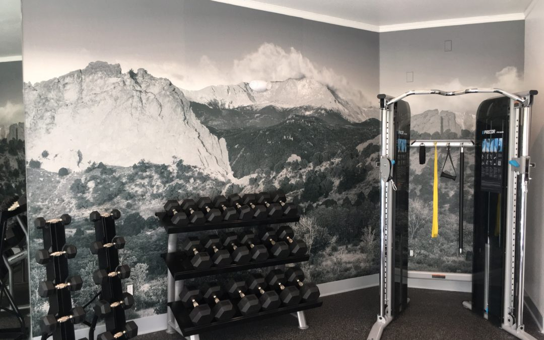 Custom Wall Graphic – Colorado Springs – Commons at Briargate